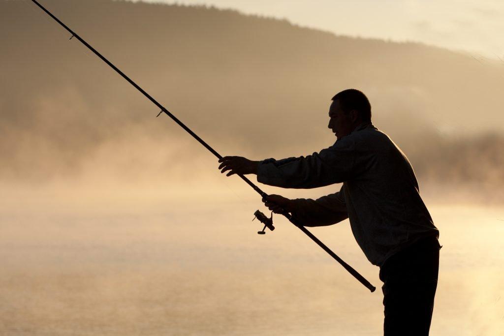 vissen in het meer